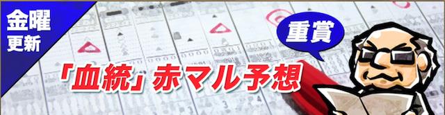 血統シックス無料コンテンツ3「金曜更新「血統」赤マル予想」